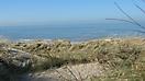 La mer et les dunes de Bray-Dunes